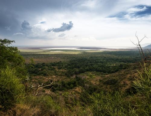 Lake Manyara & Ngorongoro
