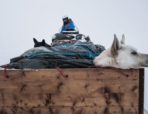 Preparations for Fjällräven Polar 2019